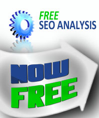 free_seo_analysis