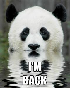 panda-239x300